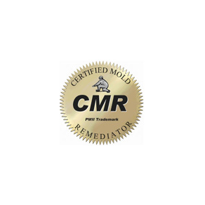 CMR Mold Removal Specialist