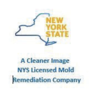 NYS Licensed Mold Remediation